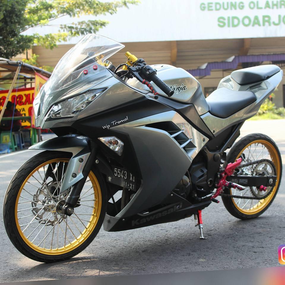 Kawasaki Ninja 250 fi ban cacing